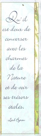 Proverbes - citations -  jolies phrases - pensées - Page 2 010_1323