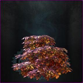 2.7 : les nouveaux items dimensionnels Captur73