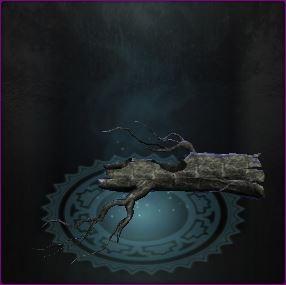 2.7 : les nouveaux items dimensionnels Captur89