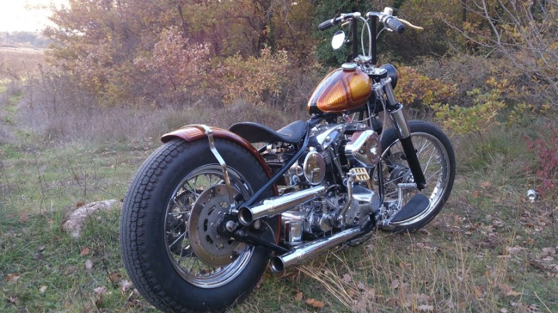 Ma moto en pièces  - Page 3 Dsc_0715