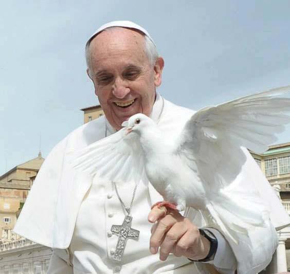 Retour Évangile de la joie/pape François/ Colomb10