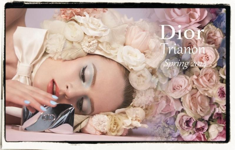 Dior Spring 2014 Copie_10