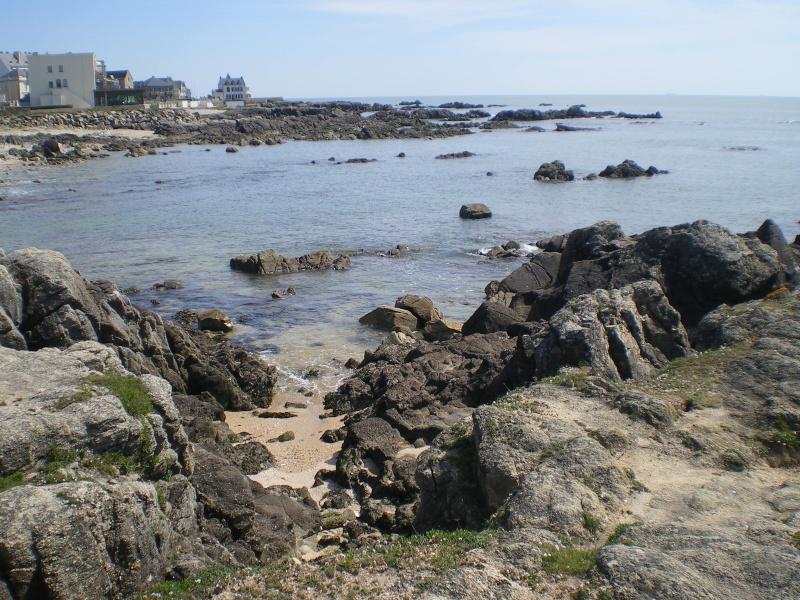 La côte d'Amour (2014) Imgp0091