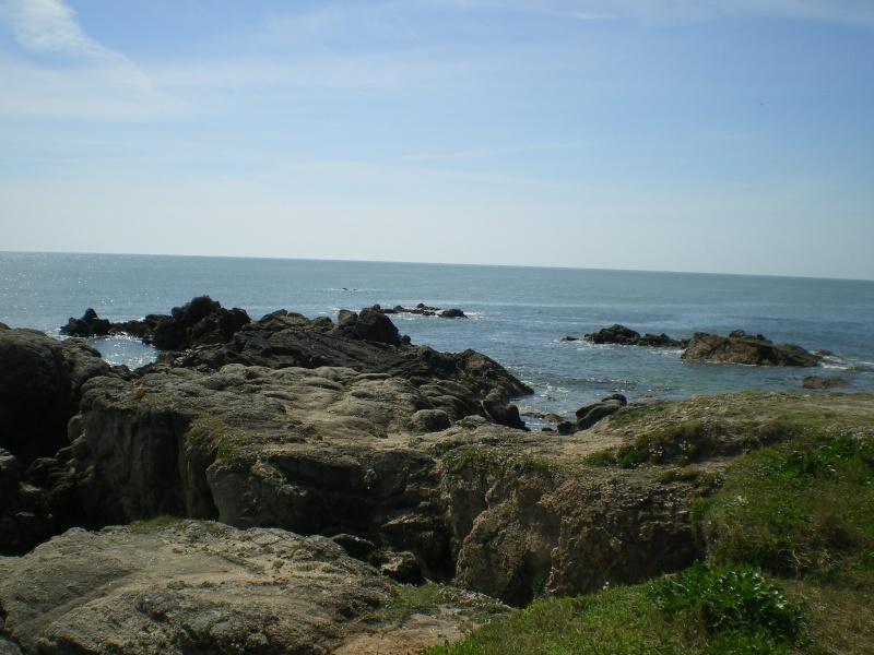 La côte d'Amour (2014) Imgp0095