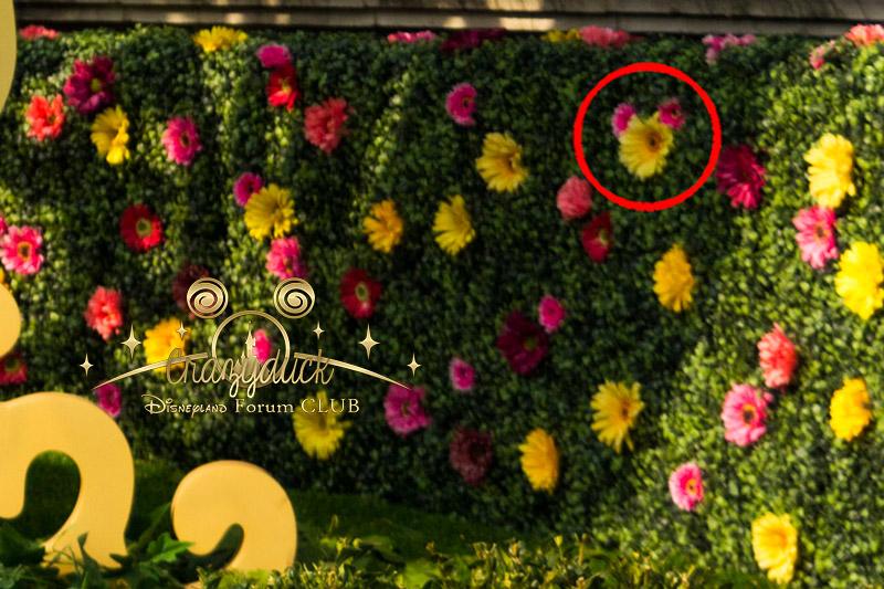 Festival du printemps 2014 (Disneyland Park) - Page 12 Dfc10
