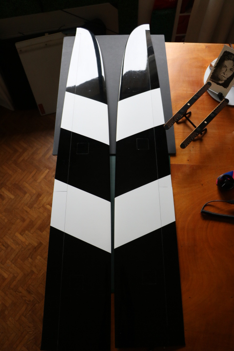 Vends FREESTYLER 3 F3B Competition Carboline HM Freest10