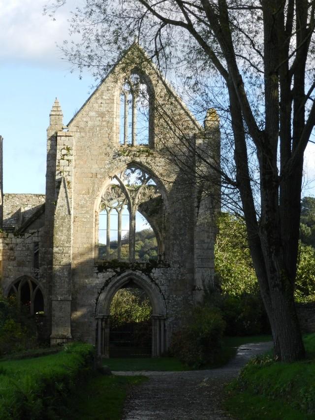 Abbaye de Beauport (Paimpol-Bretagne) à la Toussaint 2013 Abbaye12