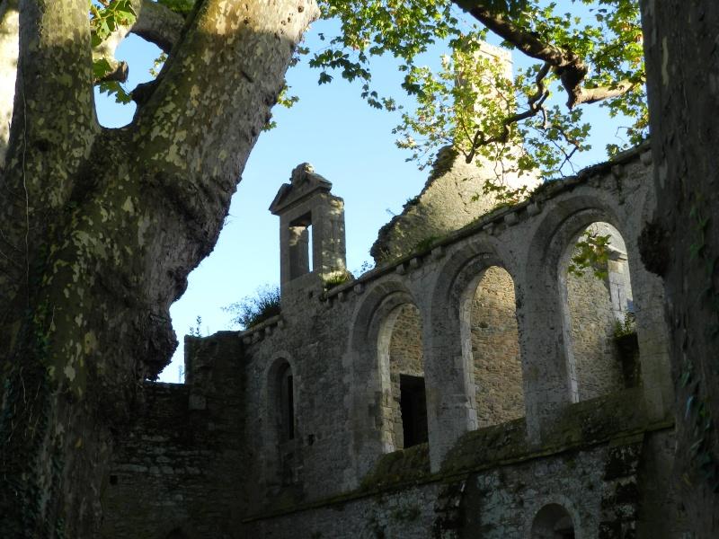 Abbaye de Beauport (Paimpol-Bretagne) à la Toussaint 2013 Abbaye15