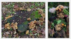 Juxtapositions oulipiennes d'images - Poésie des contrastes Automn10