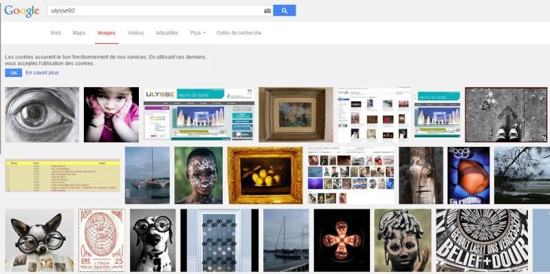 Juxtapositions oulipiennes d'images - Poésie des contrastes Captur13