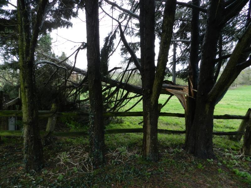 La tempête fragilise les toits alors McGyver doit intervenir Vauvar57