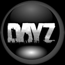 DayZ, le Standalone 110