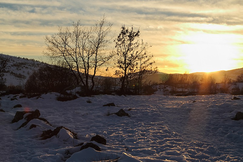 Paysage d'hiver (Col de Vence ) Img_9611