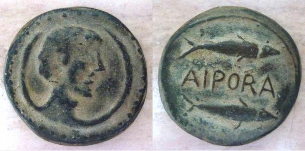 AIPORA 219