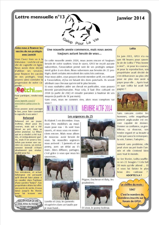 GPLV - Lettre mensuelle n°13 - Janvier 2014 Nl_jan11
