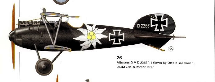 Albatros D.V 1917 - Revell 1/48 > Terminé !! Albatr11
