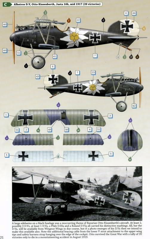 Albatros D.V 1917 - Revell 1/48 > Terminé !! Albatr12