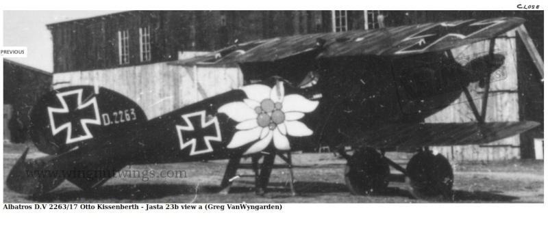 Albatros D.V 1917 - Revell 1/48 > Terminé !! Datail14