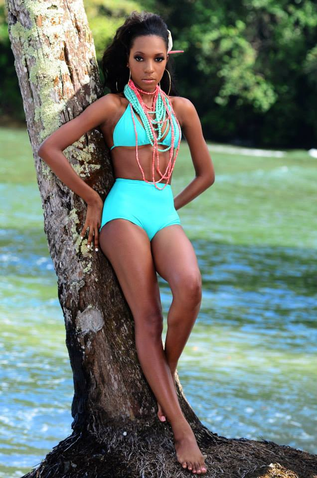 Road to Miss Dominica 2014 15285610