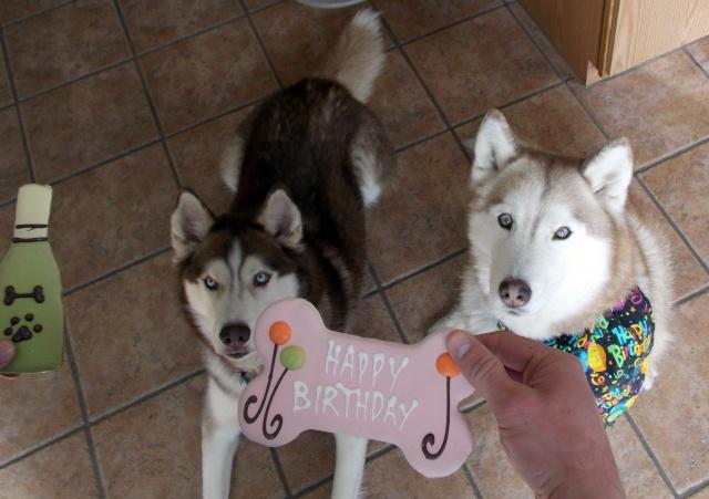 Sierra's 11th Birthday pictures Dscn4016