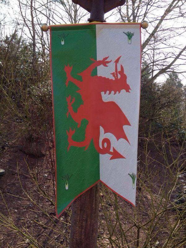 La St Patrick Day le 17 mars et le Welsh festival  (7 au 9 mars 2014) - Page 5 10120710