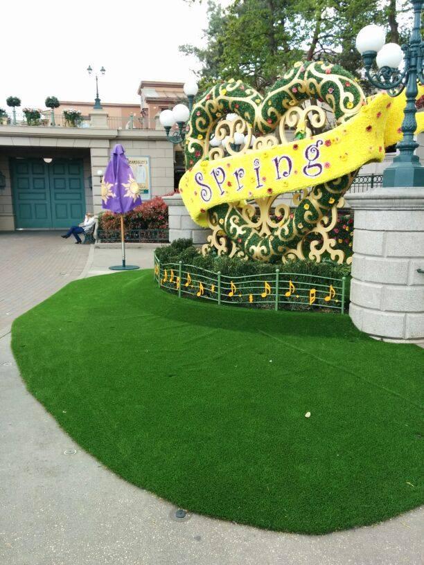 Festival du printemps 2014 (Disneyland Park) - Page 12 10155610