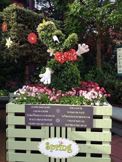 Festival du printemps 2014 (Disneyland Park) - Page 13 10256910