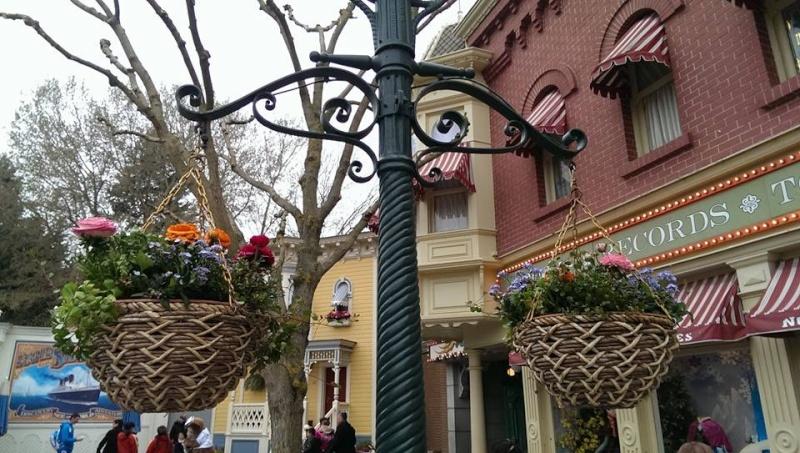 Festival du printemps 2014 (Disneyland Park) - Page 6 11746110