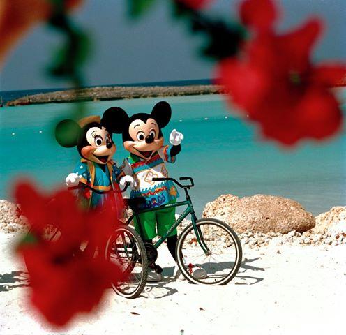Disney Cruise Line,  Les Croisières  Disney - Page 14 55144110