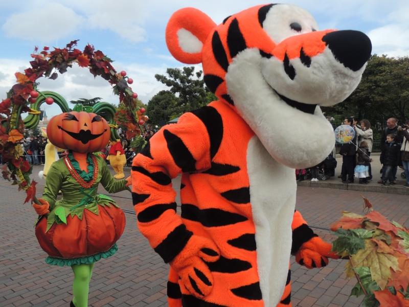 Mes journées au parc : 14 Septembre 2013 / 12 Octobre 2013 Halloween (p5) - Page 5 Dscn4654