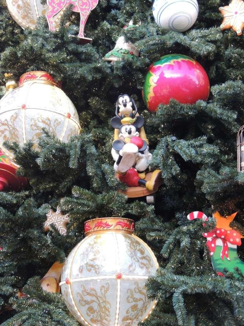 Séjour au Sequoia Lodge - Du lundi 9 au Mercredi 11 décembre 2O13 Dscn5031