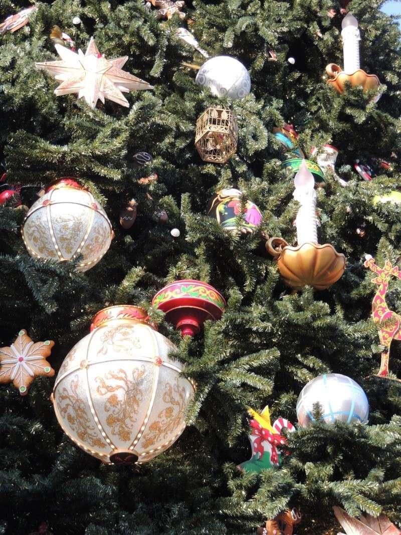 Séjour au Sequoia Lodge - Du lundi 9 au Mercredi 11 décembre 2O13 Dscn5032