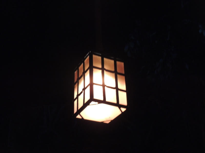 Séjour au Sequoia Lodge - Du lundi 9 au Mercredi 11 décembre 2O13 Dscn5061