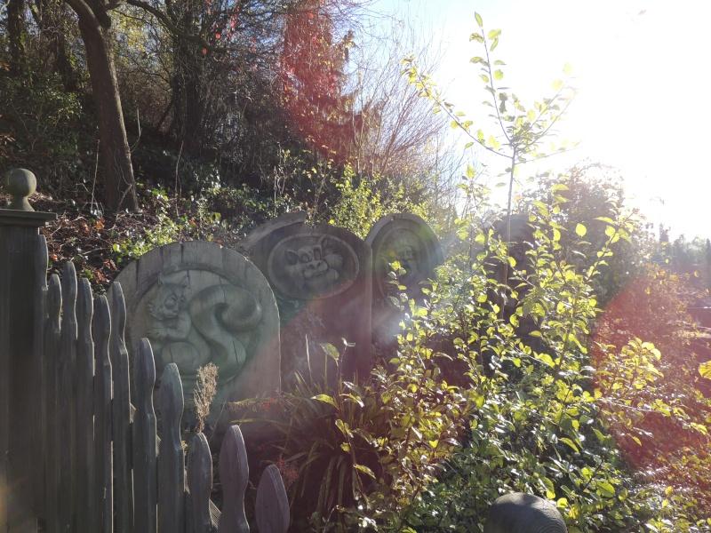 Séjour au Sequoia Lodge - Du lundi 9 au Mercredi 11 décembre 2O13 Dscn5119