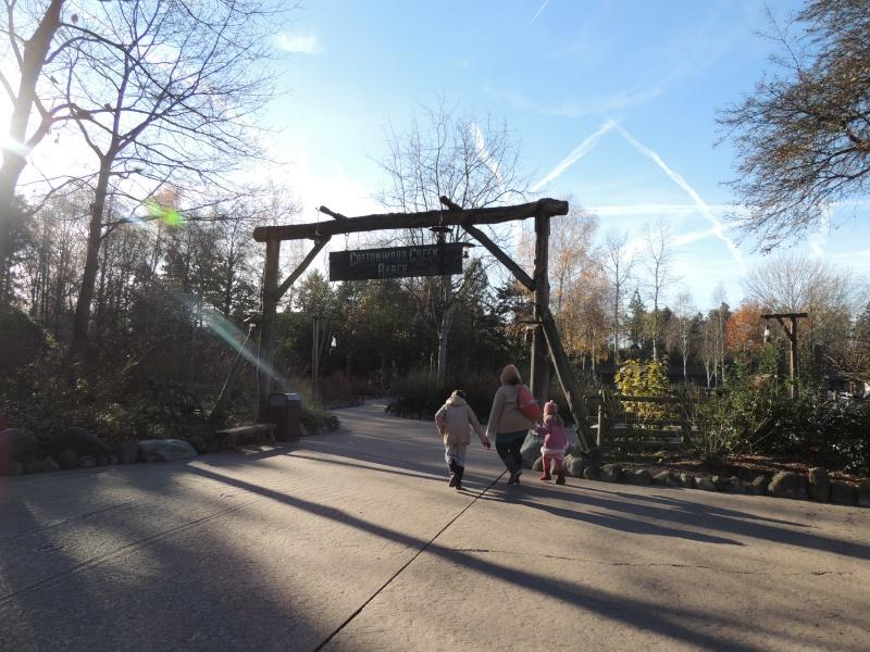 Séjour au Sequoia Lodge - Du lundi 9 au Mercredi 11 décembre 2O13 Dscn5122