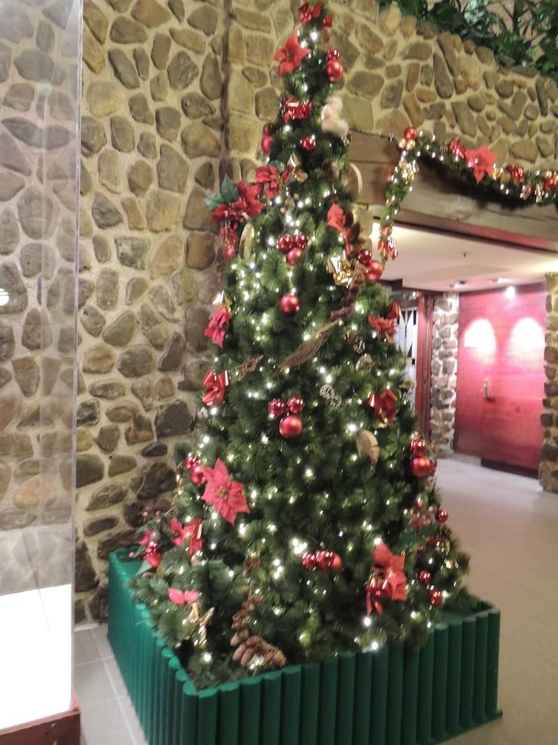 Séjour au Sequoia Lodge - Du lundi 9 au Mercredi 11 décembre 2O13 - Page 4 Dscn5548
