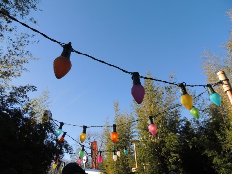Séjour au Sequoia Lodge - Du lundi 9 au Mercredi 11 décembre 2O13 - Page 5 Dscn5683