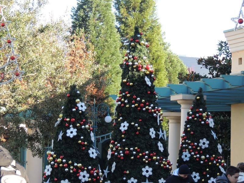 Séjour au Sequoia Lodge - Du lundi 9 au Mercredi 11 décembre 2O13 - Page 6 Dscn5720