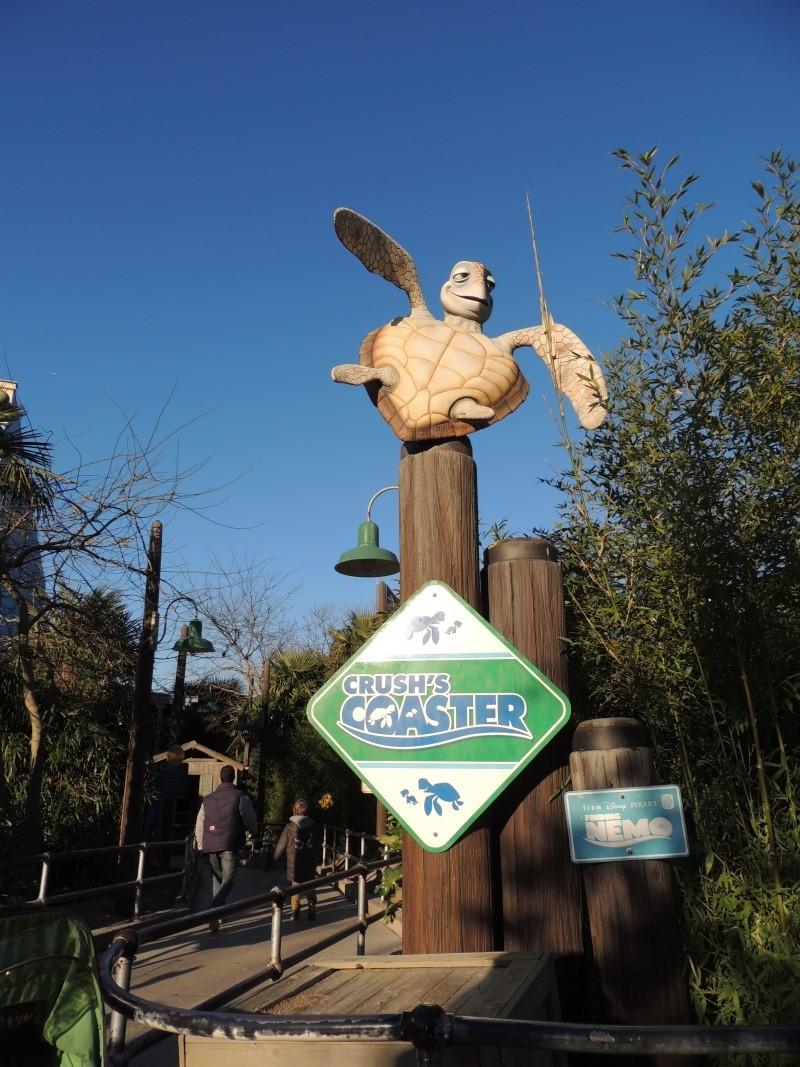 Séjour au Sequoia Lodge - Du lundi 9 au Mercredi 11 décembre 2O13 - Page 10 Dscn6275