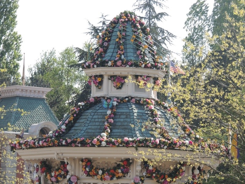 Festival du printemps 2014 (Disneyland Park) - Page 13 Dscn7245