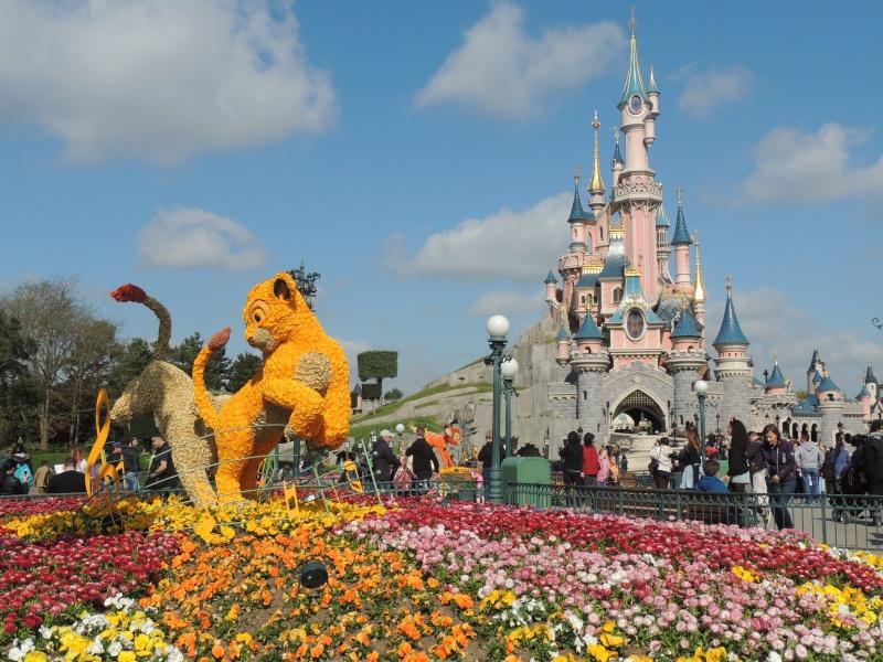 Festival du printemps 2014 (Disneyland Park) - Page 13 Dscn7250
