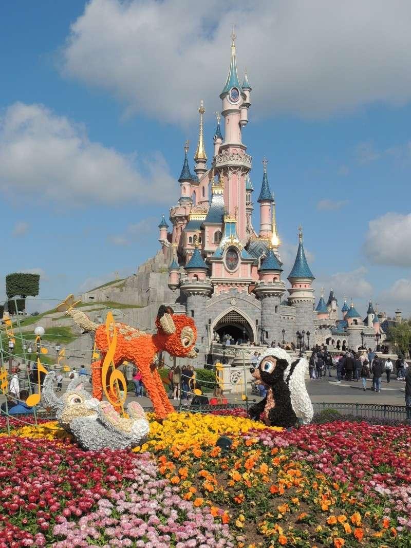 Festival du printemps 2014 (Disneyland Park) - Page 13 Dscn7268