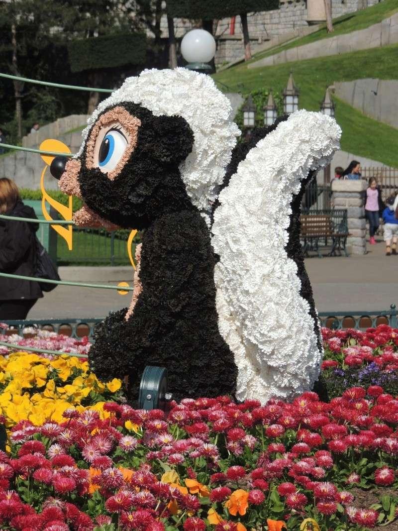 Festival du printemps 2014 (Disneyland Park) - Page 13 Dscn7269