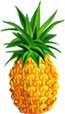 Comment jouer ? - Page 8 Ananas10