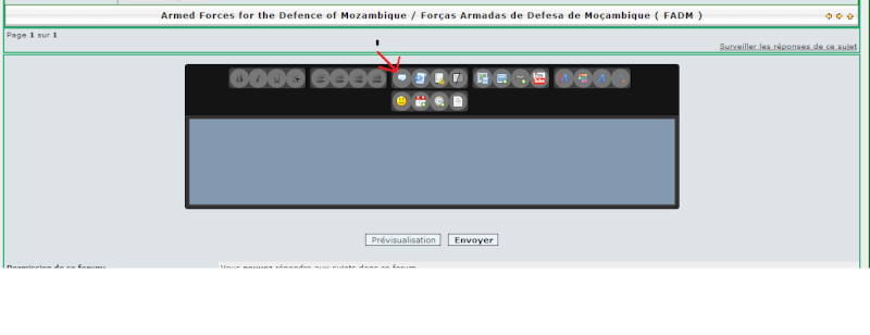 Armed Forces for the Defence of Mozambique / Forças Armadas de Defesa de Moçambique ( FADM ) Quote10