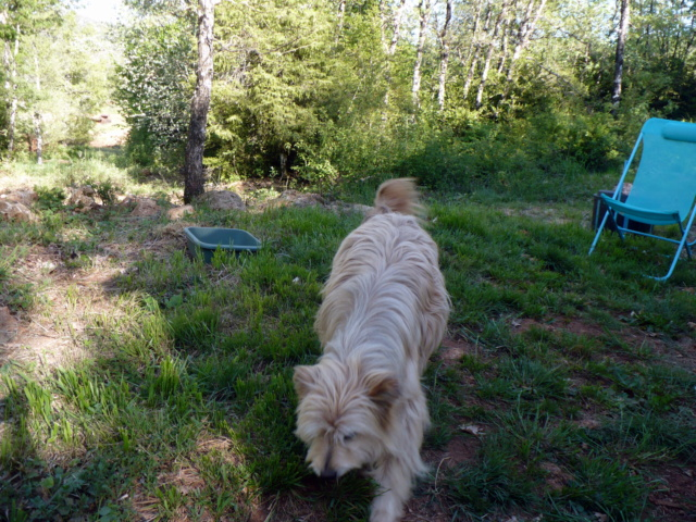 Kinderette au pays du Roquefort P1090119