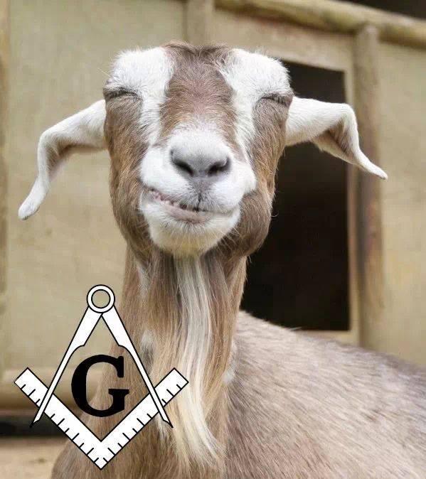***  GOAT  *** Goat10
