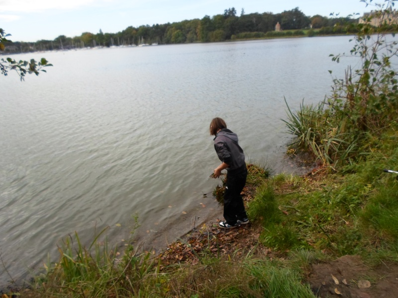 sortie d(initiation pêche mercredi 30 octobre 2013 Sam_0512