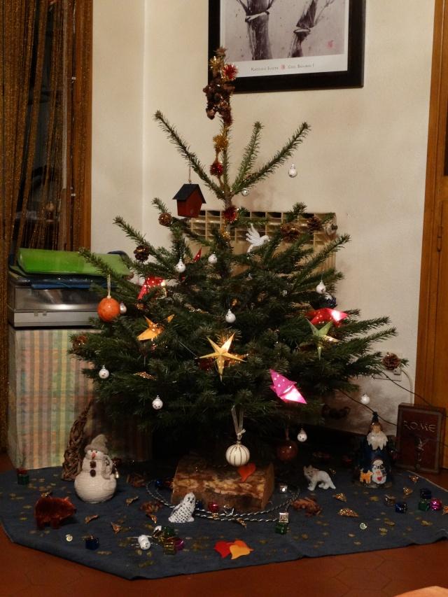 Joyeuse fêtes  ! Dsc00611