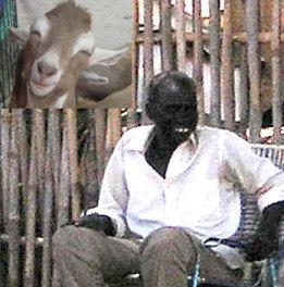 10 martesat më të çuditshme në të gjithë historinë njerëzore Goat-m10